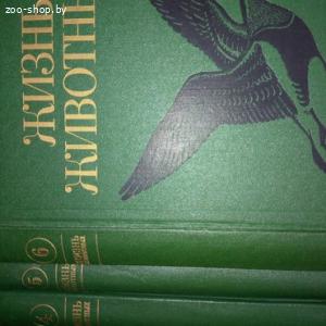 Книги о животных, птицах, рыбах
