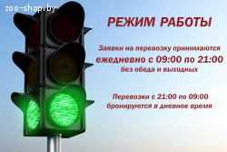 Перевозка домашних животных по Минску и Минской области. РБ